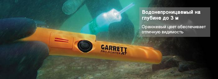 garrett-pro-pointer-at-pod-vodoy